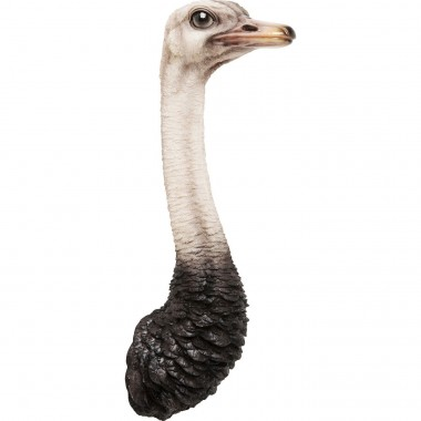 Decoração de Parede Ostrich