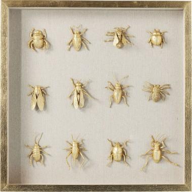 Quadro c/ moldura Bugs 60x60cm