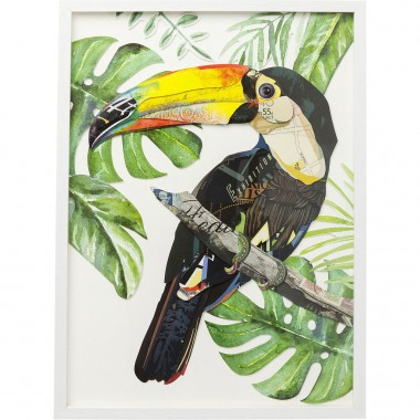 Quadro c/ moldura Art Paradise Bird Single 70x50cm