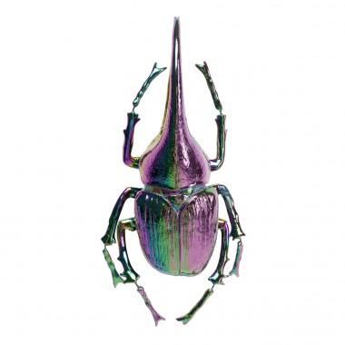 Decoração de Parede Herkules Beetle Rainbow