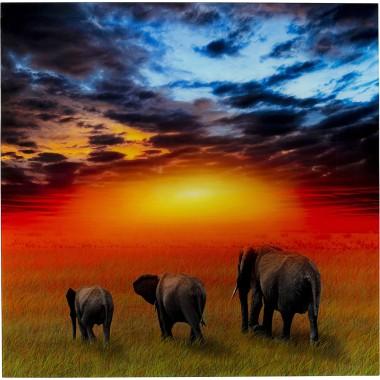 Quadro Vidro Savanne Elefants 100x100cm