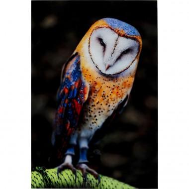 Quadro Vidro Cute Owl 120x80cm