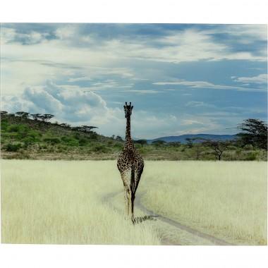 Quadro Vidro Savanne Giraffe 100x120cm