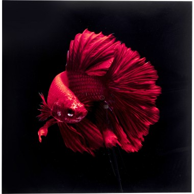 Quadro de vidro Fire Fish 100x100cm