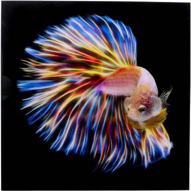 Quadro de vidro Electric Fish 100x100cm