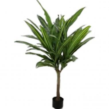 Planta decorativa Dracaena Fragrans 180cm