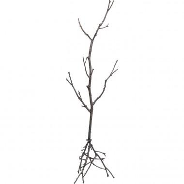 Portemanteau Tree Branch 183